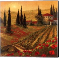 Poppies Of Toscano I Fine-Art Print