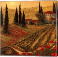 Poppies Of Toscano I Fine-Art Print