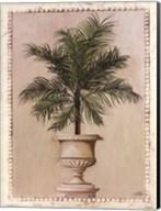 Palm Appeal II Fine-Art Print
