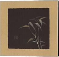 Golden Bamboo IV Fine-Art Print