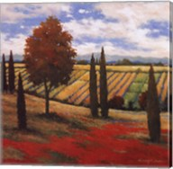 Chianti Country I Fine-Art Print