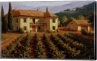 Tuscan Vineyard Fine-Art Print