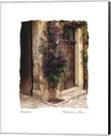 Clematis Fine-Art Print