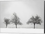 Silhouettes Of Winter II Fine-Art Print