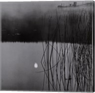 Sunken Moon, Salt Spring Island Fine-Art Print