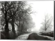 Misty Tree-Lined Road Fine-Art Print