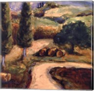 Road To Montpulciano Fine-Art Print