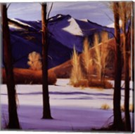 Colorado Snow Fine-Art Print