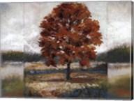 Evening Oak Fine-Art Print