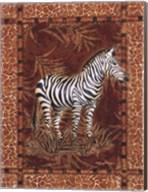 Lone Zebra Fine-Art Print