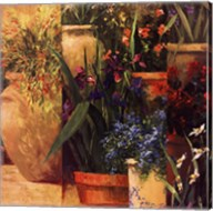 Flower Pots Left Fine-Art Print