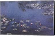 Waterlillies Fine-Art Print