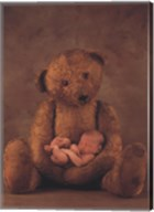 Campbell With Bear Fine-Art Print