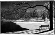 Heritage Pond In Winter Fine-Art Print
