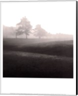 Fog Tree Study II Fine-Art Print