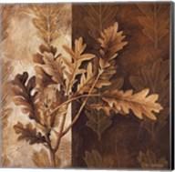 Leaf Patterns I Fine-Art Print