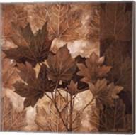 Leaf Patterns II Fine-Art Print