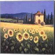 Golden Warmth Fine-Art Print