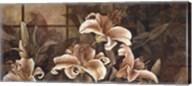 Lily Impression Fine-Art Print