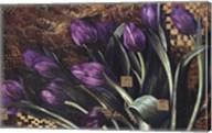 Regal Tulips Fine-Art Print