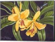 Vibrant Orchid I Fine-Art Print