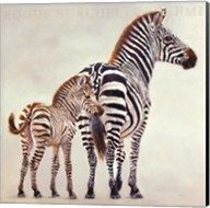 Zebre Et Son Petit De Ndutu Fine-Art Print