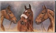 Three Winter Kings Fine-Art Print
