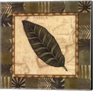 Tropical Leaf III - Special Fine-Art Print