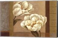 Tulip Duet - Cs Fine-Art Print