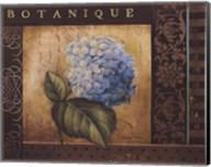 Botanique I Fine-Art Print