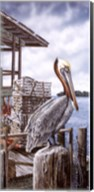 Pelican Key Fine-Art Print