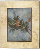 Giardino I Fine-Art Print