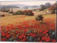 Italian Poppy Vista II Fine-Art Print
