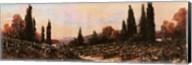 Autumn Vineyard #1 Fine-Art Print