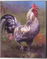 Purple Rooster Fine-Art Print