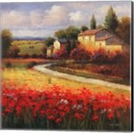 Tuscan Summer Fine-Art Print