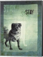 Stay Fine-Art Print
