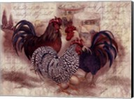 Rooster Trinity Fine-Art Print