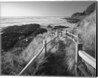 Pathway To Beach Fine-Art Print