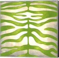 Vibrant Zebra III Fine-Art Print