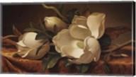 Magnolia On Gold Velvet Cloth Fine-Art Print