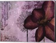 Pressed Flowers I Fine-Art Print