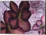Pressed Flowers II Fine-Art Print