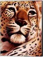 Rest On Serengeti Fine-Art Print