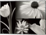 Summer Garden I Fine-Art Print