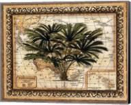 East Indies Palm Fine-Art Print