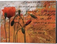 Poppies Composition I Fine-Art Print