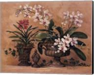 An Orchid Renaissance Fine-Art Print