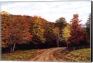Autumn Lane Fine-Art Print