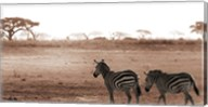 Crossing The African Plains Fine-Art Print